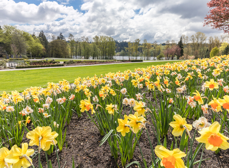 What to see in Burnaby for free